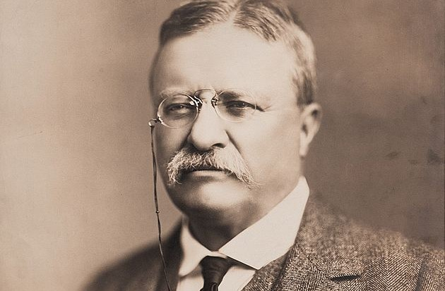 630px-theodore_roosevelt_in_1918