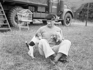 597px-Animals_in_War_1939-1945_B6541